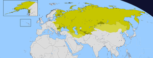 Russian Empire by Sharklord1