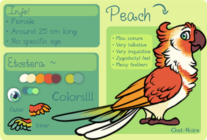Peach ref by Chat-Noire