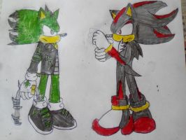 Cactus and Shadow face off by TheOneAndOnlyCactus