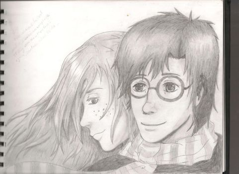 Harry and Ginny by Fledge-chan
