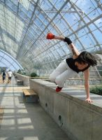 Mirror's Edge - Faith I by Sakiko-Seihikaru