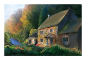 house in the country by IrysArt