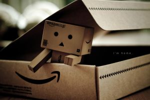 danbo's home. by sam-hunt