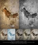 Wall texture 01 by gd08