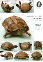 posable art doll - turtle! by Ynik-name