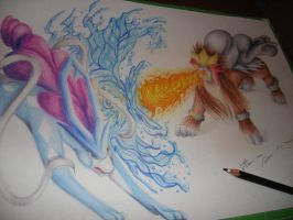 Suicune and Entei by IlariArt