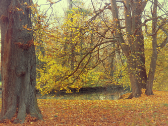 Autumn 2013 by SweetNatalii