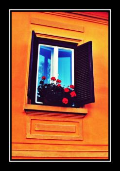 Window with red flowers II by drkng31