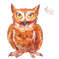 Red Screech Owl by Naaura