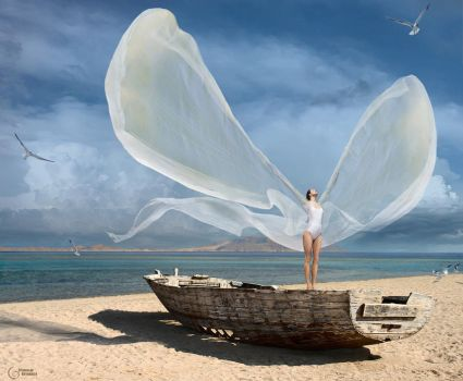 to catch a wind by StanOd
