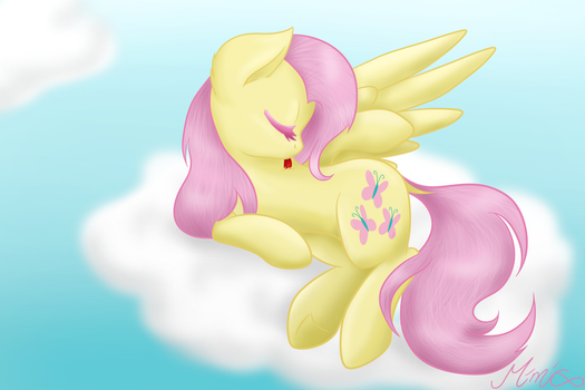 My little pony - Flutters cat-wash by MimicProductions