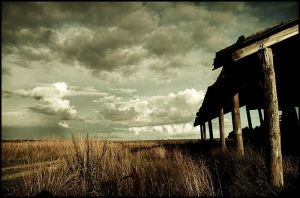 Shelter by raun