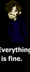 Everything Is Fine by Wolfyyoyogamer