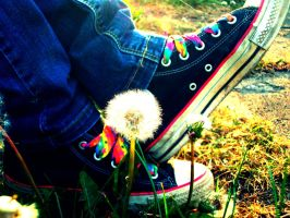 Bright Converse and a flower by SalT-N-BeckaR