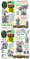 How to draw JUNGLE PLANT CLUSTERS tutorial by STUDIOBLINKTWICE