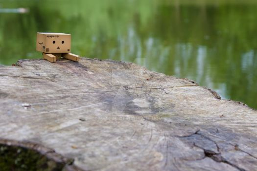 Danbo the Explorer by PeteOB