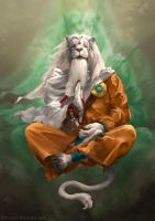 Ajani the Transcended by BryanFR