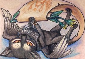 ACEO: Beetle the Mailcat by DanielleMWilliams