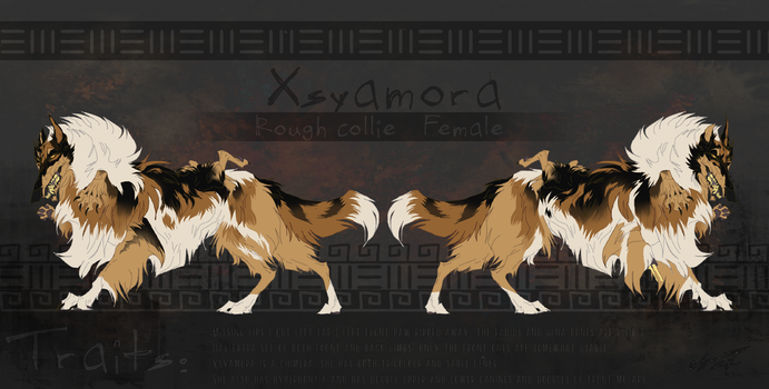 Xsyamora reference sheet -- 2017 by Saranna