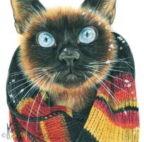 The cat in the scarf by slightlymadart