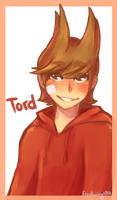 have a tord by Frostwing1201