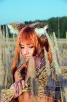 Horo-Spice and wolf 02 by Cra-zy-Frog