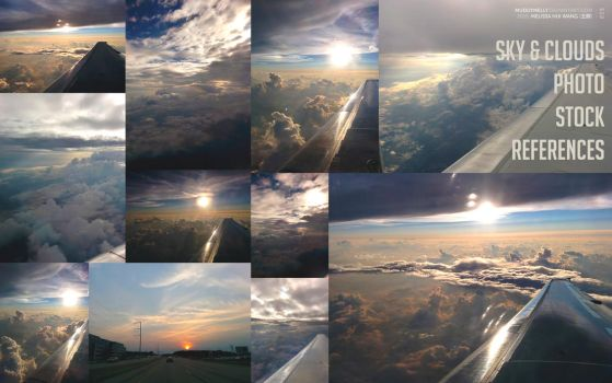 [Reference] - Skies and clouds (and airplane wing) by muddymelly