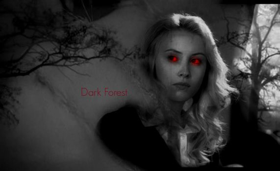 Dark Forest cover. by CMoretzfan19