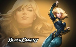 Black Canary by Artgerm 2 by Superman8193