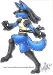 AC-Chibi- Female Lucario by digital-blood