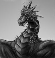 The Dragon's portrait by SarahHachuPitchu