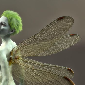 Dragonfly pixie2 by Willbear