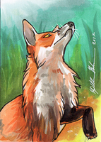 Red Fox ACEO 1 by Redwall151