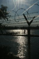 barbed wire by toni4bologna