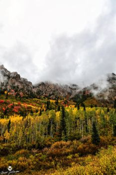 Cloud Covered Autumn by mjohanson