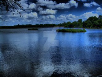 Earlswood Lakes West Midlands UK, The Engine Pool. by barmybaggie