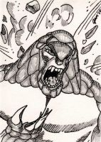 Armadillo Sketch Card by jamsketchbook