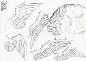 How to - Drawing Wings by farahin001