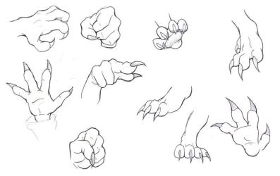 paws and claws practice by btzai