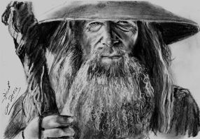 Gandalf the Grey by Mohamed Ziou by MoZiou