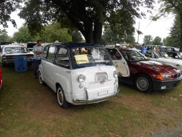 Fiat Multipla 600 by canona2200