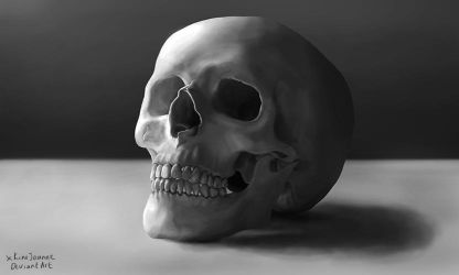 Digital Painting Skull Still Life Practice by KimJSinclair