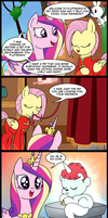 MLP: A pet for Princess Cadence by tan575