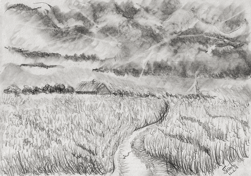 Open field with a Distance storm by SulaimanDoodle