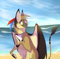 Beachy days by MetuMortis