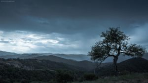 The rain is near by FemtoGraphy