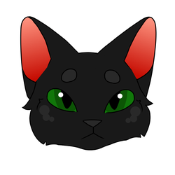 Blinky Hollyleaf (Attempt at Animating) by BanetteArtt