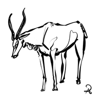 inktober2018 #1 addax antelope by callanerial