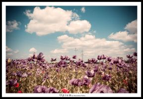 Opium by McFossey