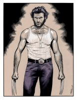 Wolverine Origins by 93Cobra
